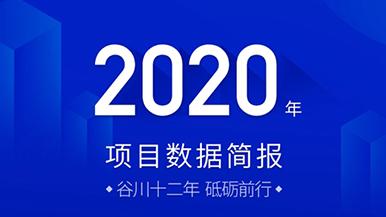 请查收!谷川联行2020年度数据简报出炉,助力976个项目落地!